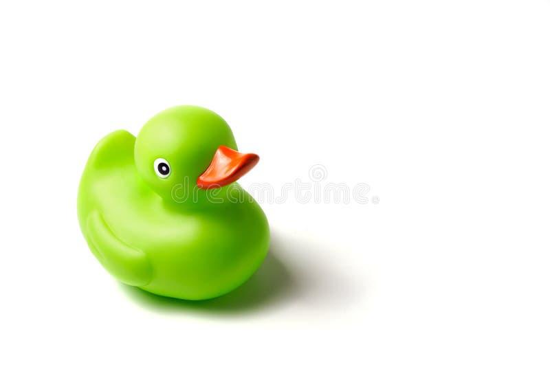 Ducky de borracha verde fotos de stock royalty free