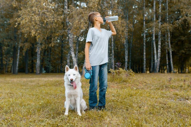 Dueño del adolescente del muchacho de un agua potable del perro esquimal blanco del perro de una botella, caminando con el perro  imágenes de archivo libres de regalías