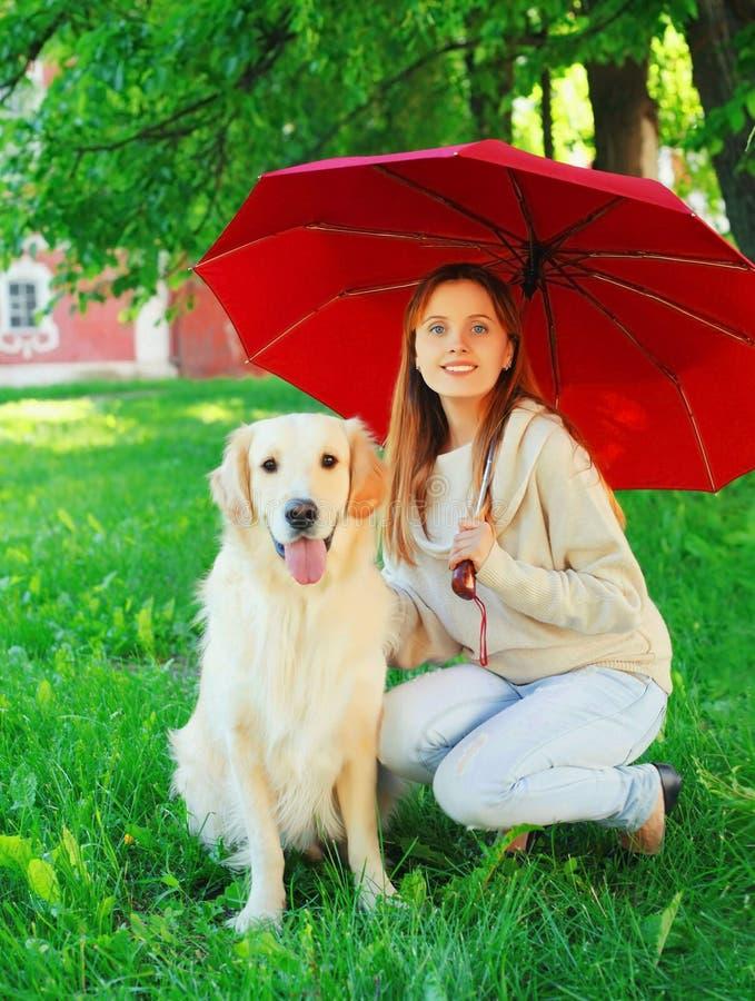 Dueño feliz y perro sonrientes del golden retriever junto que oculta debajo del paraguas en hierba en verano fotos de archivo