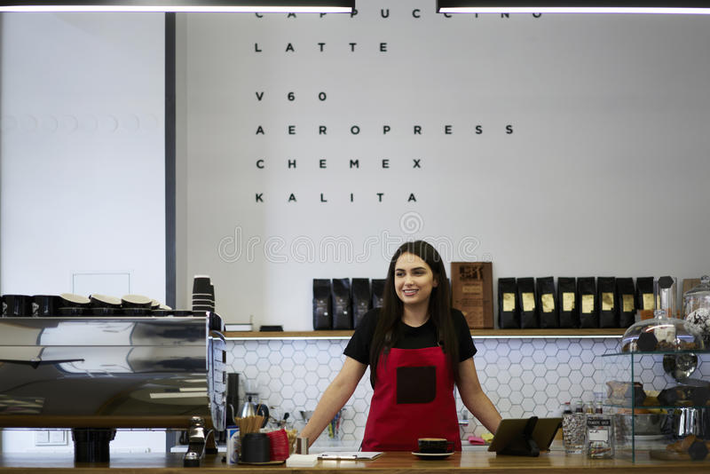 Dueño femenino atractivo del barista de la empresaria del caffe de la barra fotos de archivo