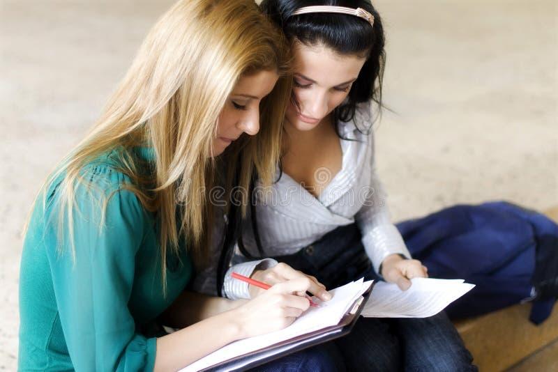 Due allievi che imparano insieme immagine stock