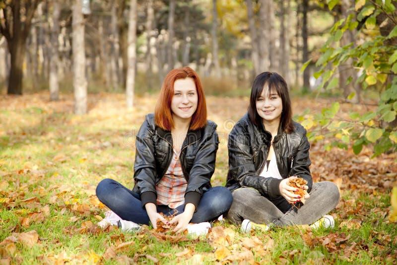 Due amiche alla sosta di autunno. fotografia stock libera da diritti