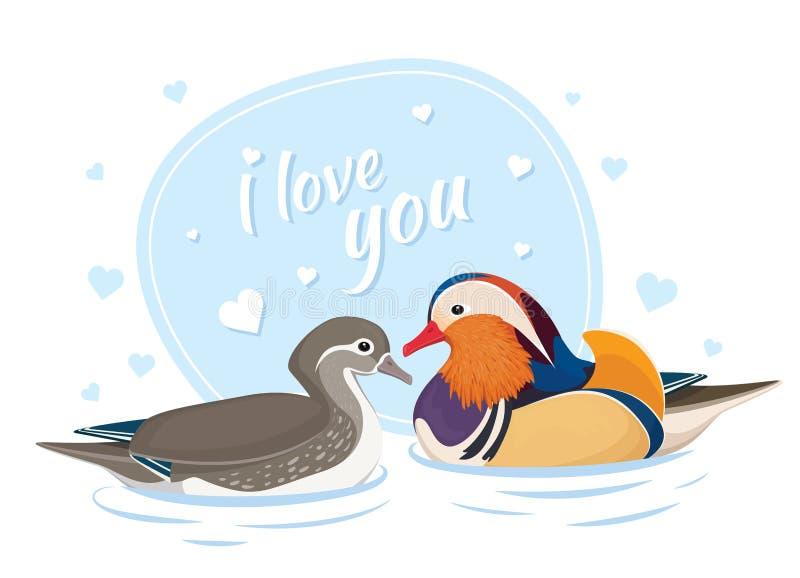 Due anatre di mandarino nell'amore Simbolo di amore e del matrimonio Carta per il giorno di S Uccelli asiatici Maschio e femmina  illustrazione vettoriale