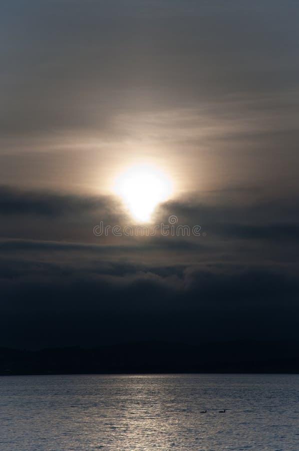 Due anatre nel tramonto fotografie stock libere da diritti