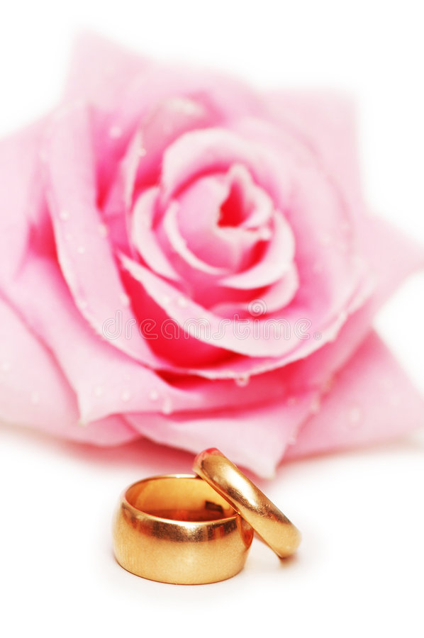 Due anelli di cerimonia nuziale e sono aumentato immagini stock