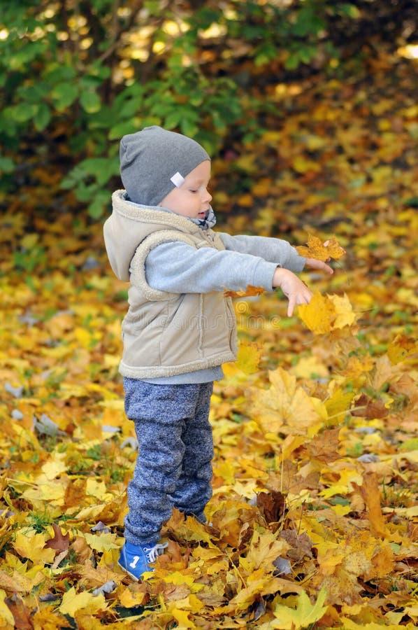 Due anni di condizione del ragazzo sulle foglie di autunno di caduta fotografia stock