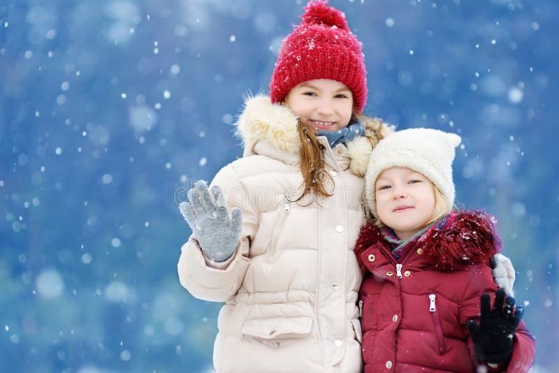 Due bambine adorabili divertendosi insieme nel bello parco di inverno Belle sorelle che giocano in una neve immagini stock libere da diritti
