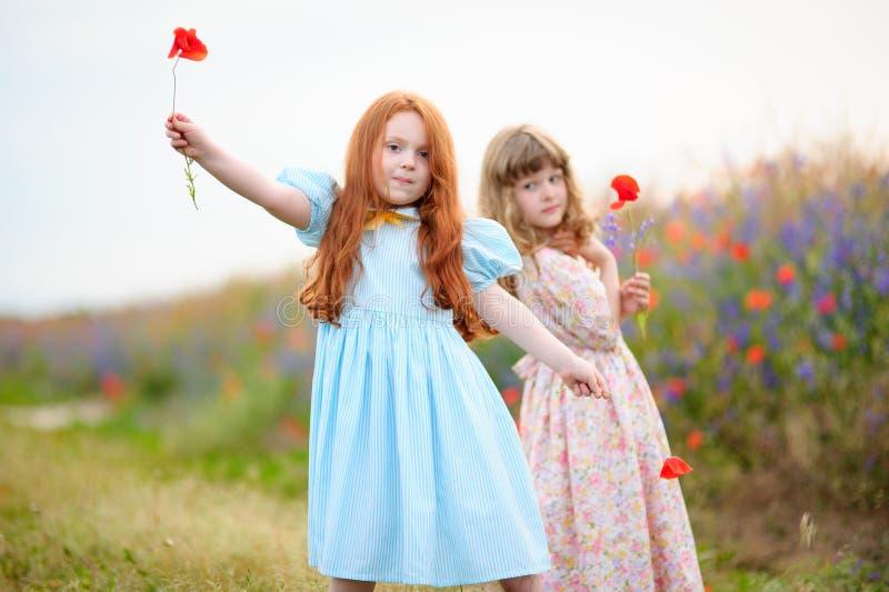Due bambine sveglie che giocano con i fiori in un campo di estate fotografia stock