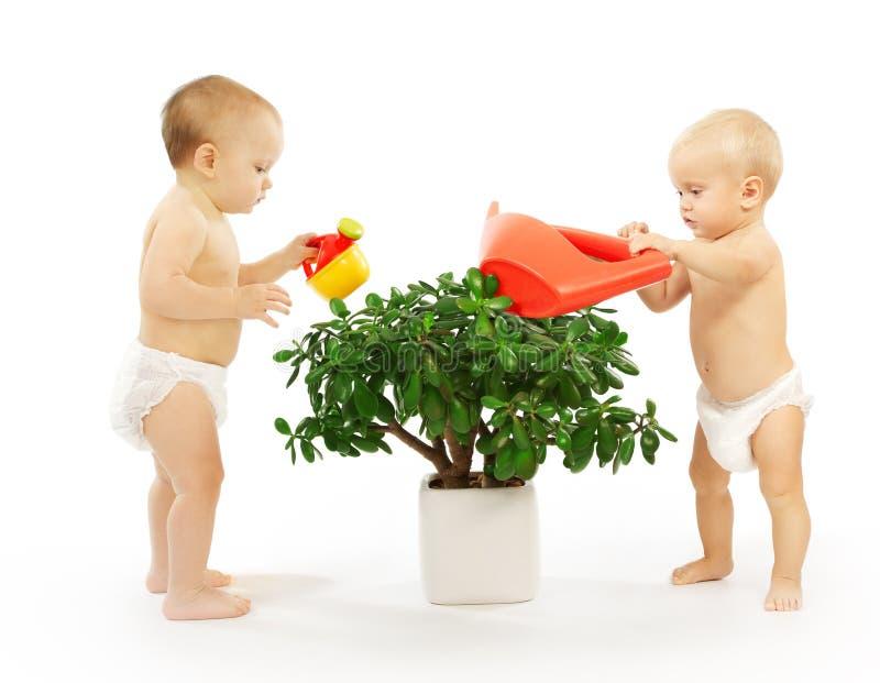 Due bambini che innaffiano insieme una pianta. fotografia stock