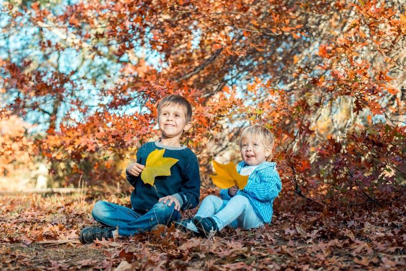 Due bambini sorridenti nel parco di autunno immagine stock