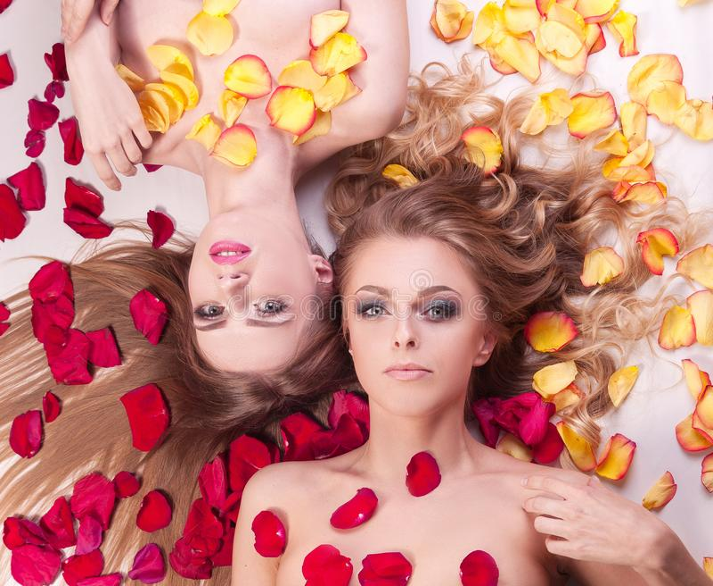Due belle giovani donne che si rilassano menzogne fra i petali rosa immagini stock
