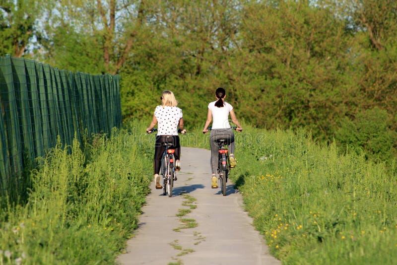 Due belle ragazze in attrezzatura di sport che guida le loro biciclette sul percorso pavimentato del paese circondato con alte er fotografia stock libera da diritti