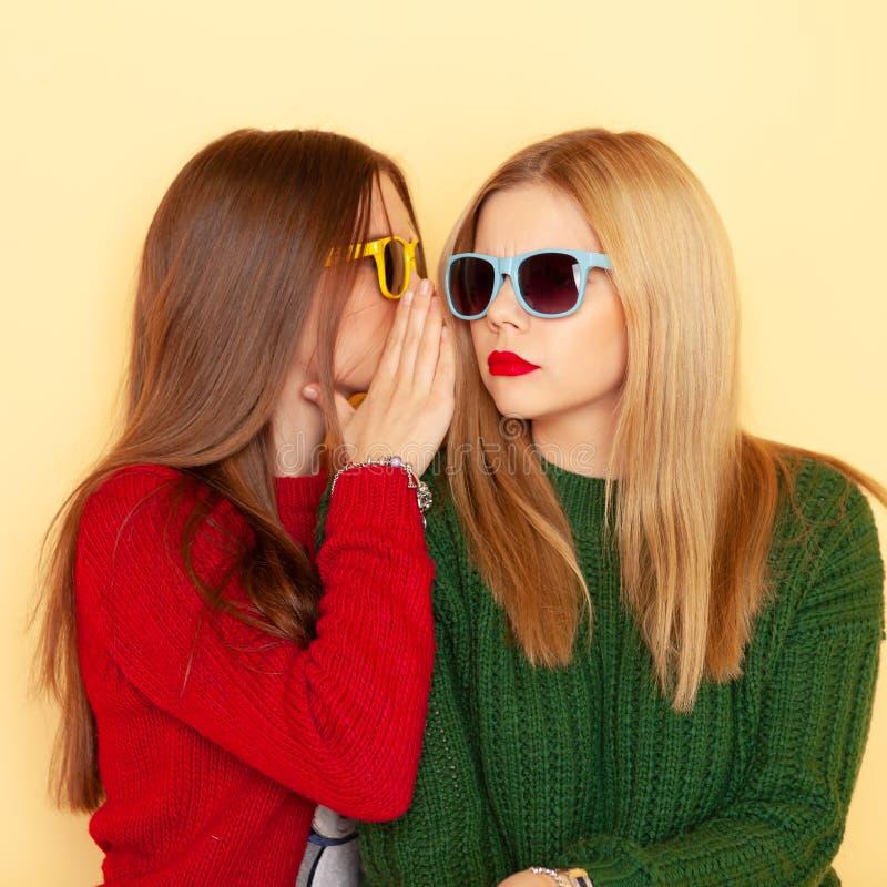 Due belle ragazze divertenti dei pantaloni a vita bassa in maglioni ed occhiali da sole Inverno e modo di concetto immagini stock