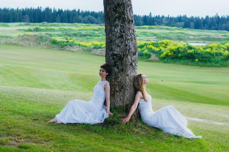 Due belle spose che si siedono vicino all'albero sul campo verde immagine stock libera da diritti