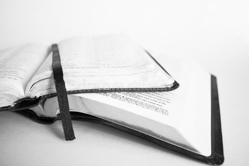 Due bibbie su bianco immagine stock