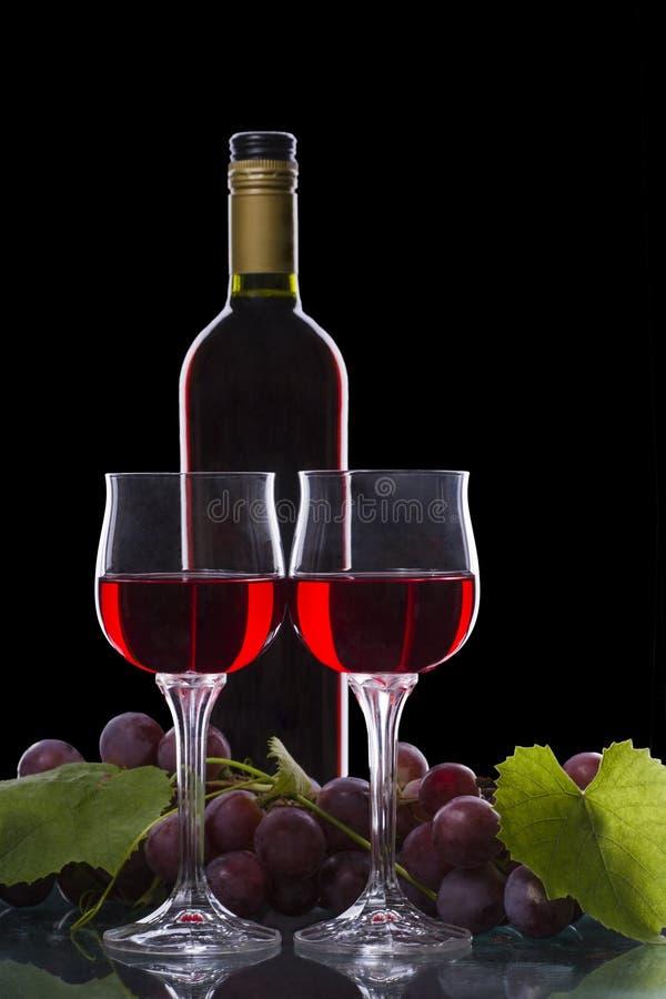 Due bicchieri con vino rosso e una vite con foglie immagine stock libera da diritti