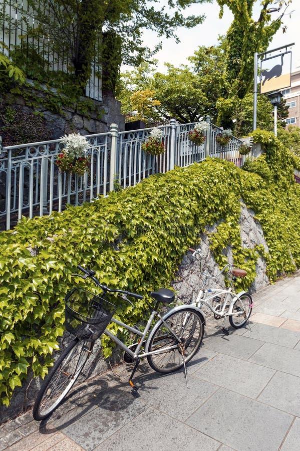 Due biciclette che parcheggiano sul sentiero per pedoni accanto alla parete di pietra coperta dall'edera di strisciamento immagine stock libera da diritti