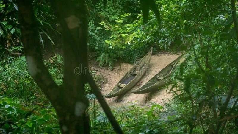 Due canoe accanto ad un fiume nella foresta tropicale fotografia stock
