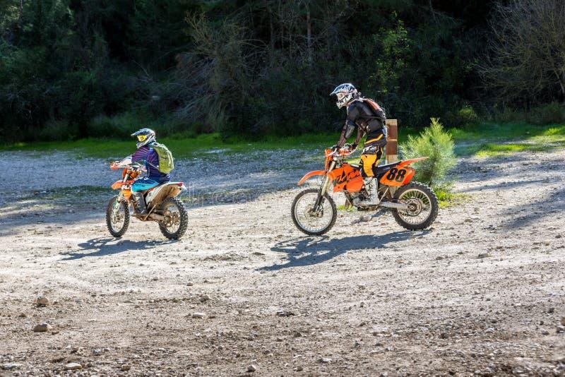 Due cavalieri sugli sport bikes la guida lungo una strada campestre nella foresta, Israele immagine stock