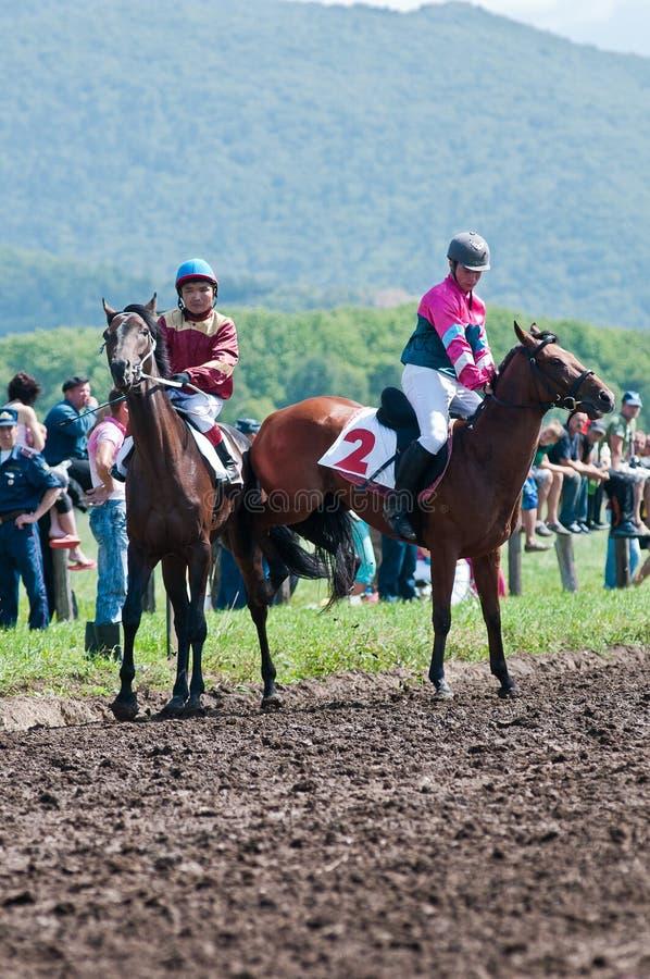 Due cavalieri sul cavallo del thoroughbred prima dell'inizio fotografia stock libera da diritti