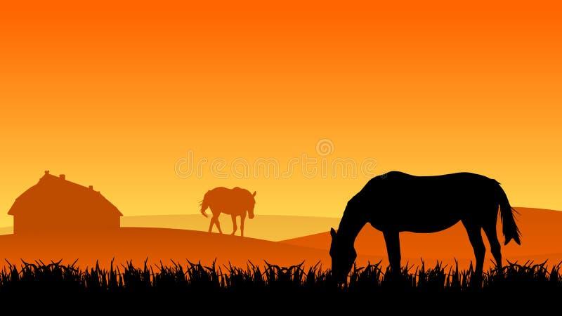 Due cavalli sul pascolo illustrazione vettoriale