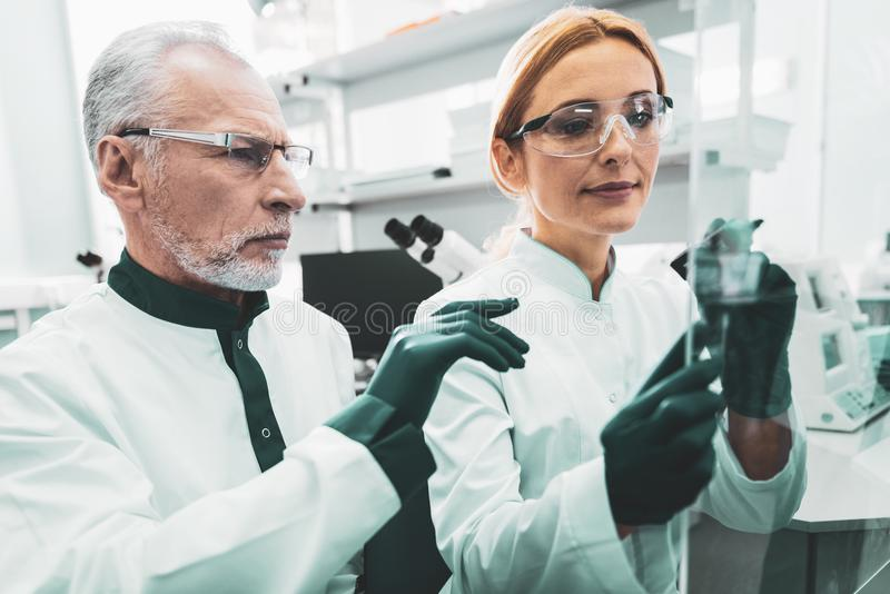 Due chimici occupati che tengono le provette in mani immagini stock