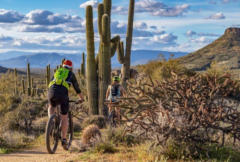Due ciclisti in mountain-bike sulla traccia del deserto in Arizona fotografia stock libera da diritti
