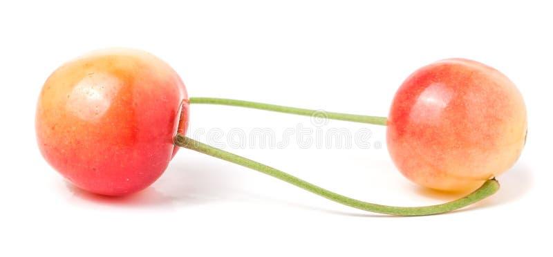 Due ciliege gialle su fondo bianco immagine stock libera da diritti