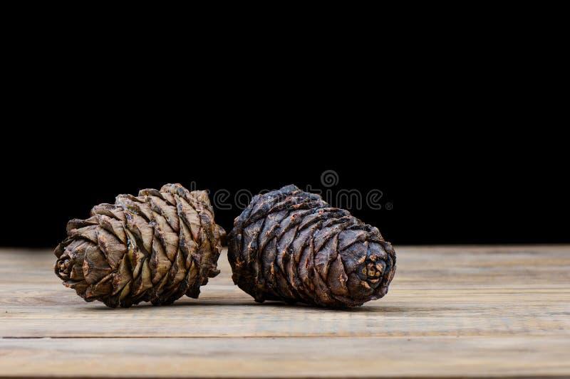Due coni siberiani del cedro di taiga su una tavola di legno Resina del cedro su un urto immagini stock libere da diritti