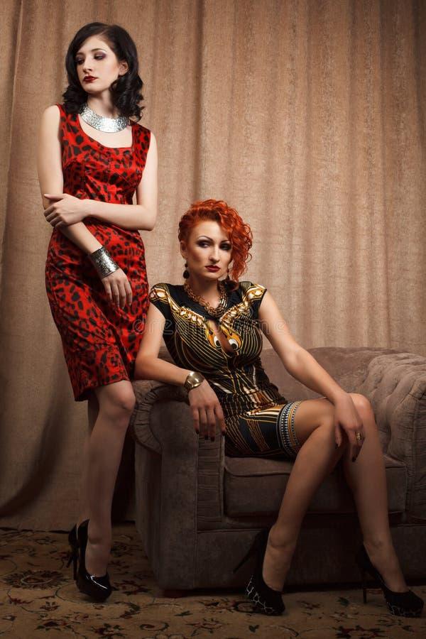 Download Due donne attraenti immagine stock. Immagine di brunette - 30827321