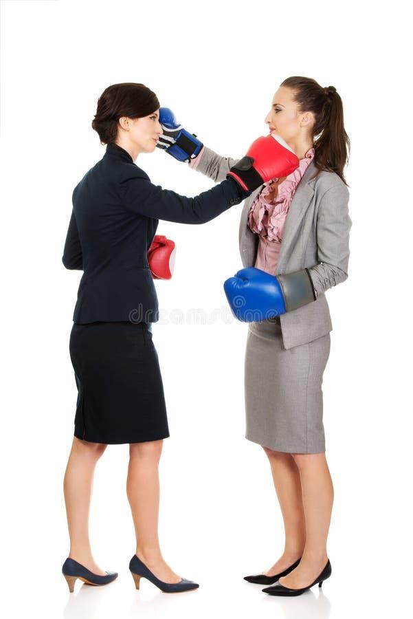 Due donne di affari con il combattimento dei guantoni da pugile fotografia stock libera da diritti