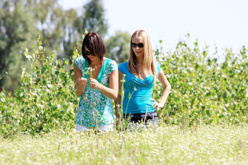 due donne giovani immagine stock libera da diritti