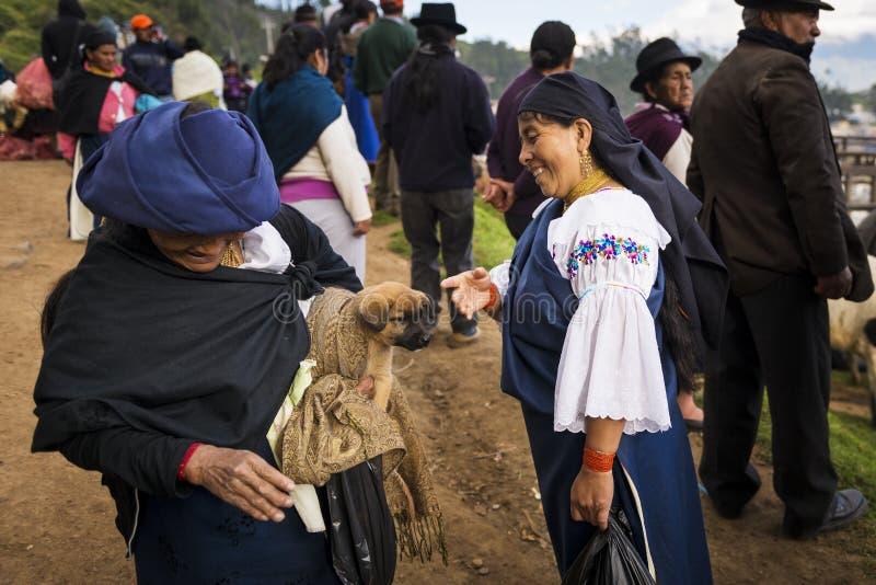 Due donne locali che parlano al mercato del bestiame della città di Otavalo nell'Ecuador fotografia stock libera da diritti