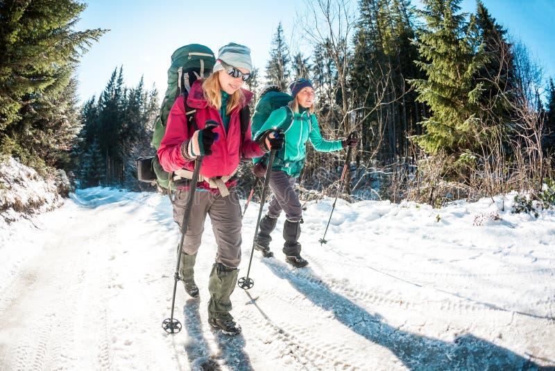 Due donne in un aumento di inverno immagini stock