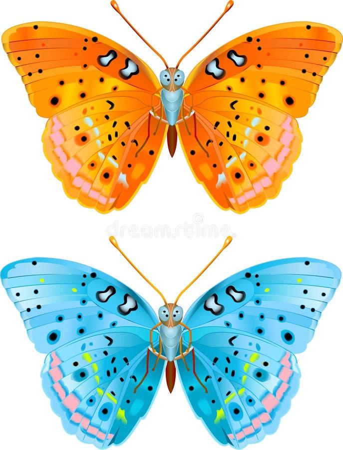 Due farfalle illustrazione di stock