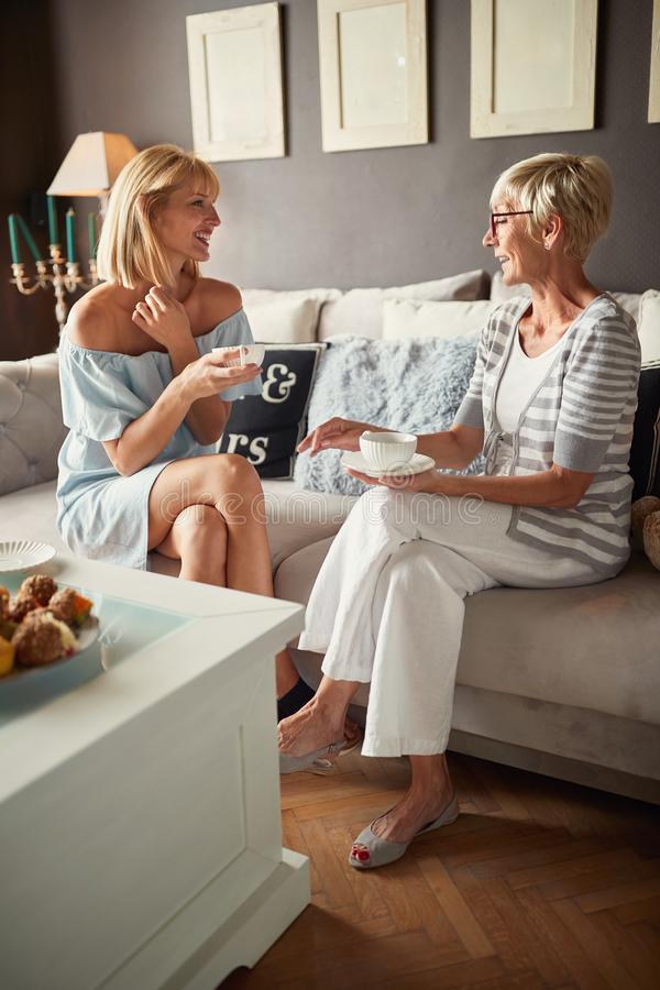 Due femminili nella conversazione con la tazza di caffè immagini stock