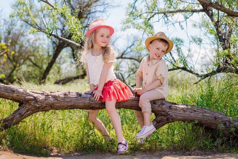 Due fratello piccolo e sorella che si siedono in un albero immagine stock libera da diritti