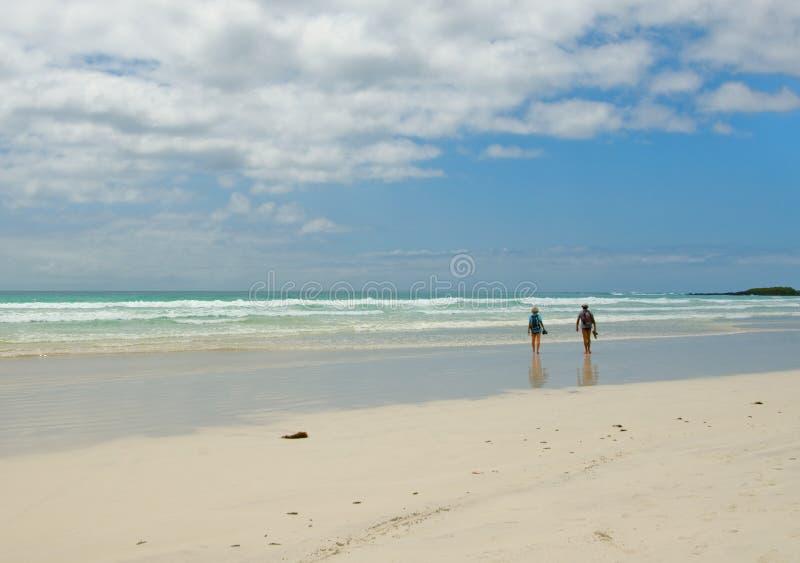 Due genti che camminano nella spiaggia immagine stock libera da diritti