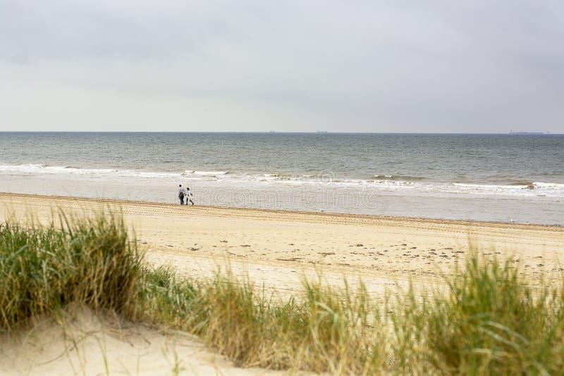 Due genti che vagano lungo la linea costiera del Mare del Nord nell'ovest dei Paesi Bassi immagine stock libera da diritti