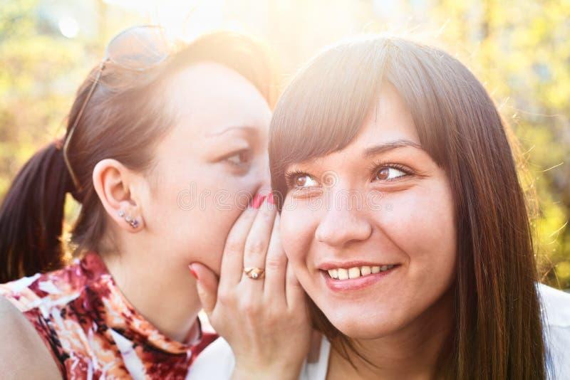 Due giovani belle donne fotografie stock libere da diritti