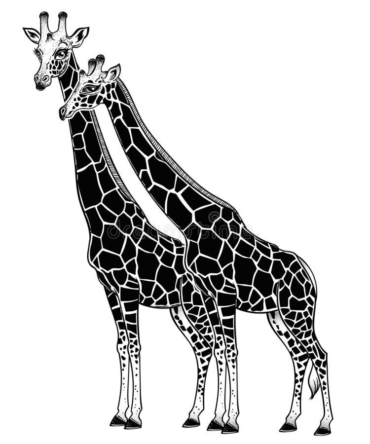 Due giraffe come coppia i partner nell'amore illustrazione vettoriale