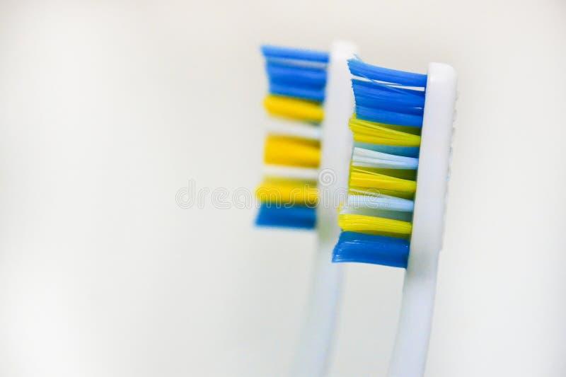 Due hanno utilizzato gli spazzolini da denti su un fondo bianco Il concetto degli spazzolini da denti cambianti, igiene orale, od immagine stock libera da diritti