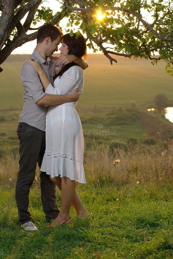 Due innamorati che baciano sotto l'albero al tramonto immagine stock libera da diritti