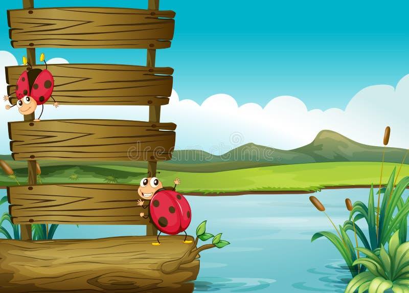 Due insetti nel lago illustrazione di stock
