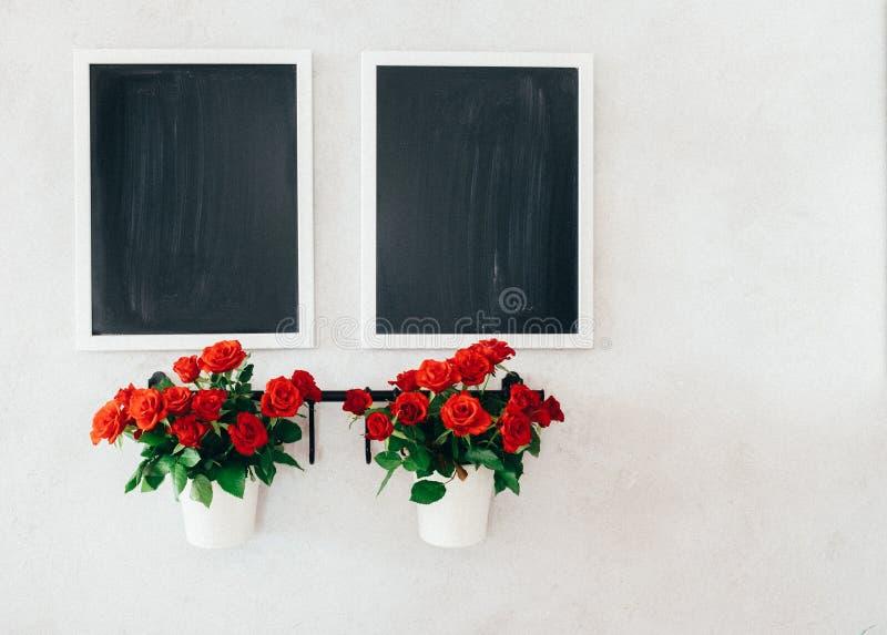 Due lavagne e due mini vasi delle rose sulla parete concreta di lerciume fotografia stock