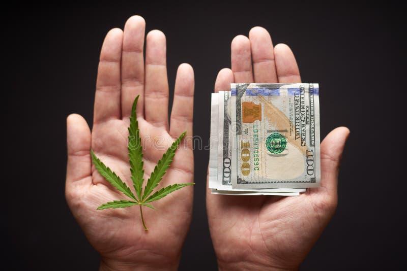 Due mani con le cannabis ed i soldi Il concetto di vendita della marijuana, canapa, droghe fotografia stock