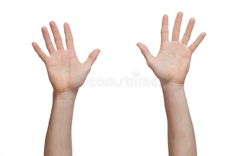Due mani sollevate su fotografia stock libera da diritti