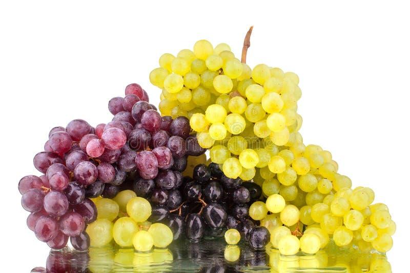 Due mazzi di uva rossa e bianca su un fondo bianco dello specchio con la riflessione e le gocce di acqua hanno isolato vicino su fotografie stock