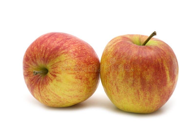 Due mele rosse fresche fotografia stock