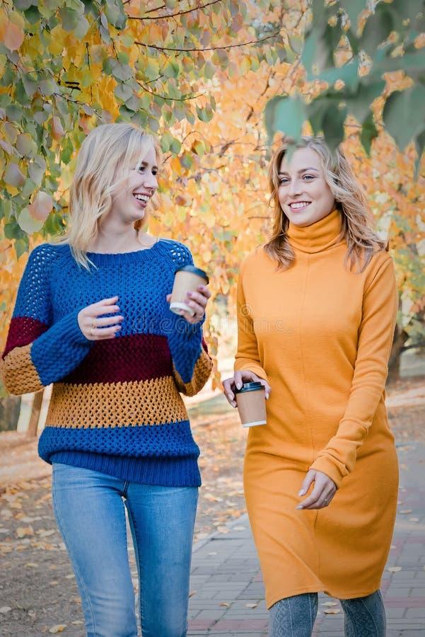 Due migliori amici attraenti allegri delle giovani donne che camminano insieme e che si divertono esterno fotografia stock